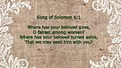 Song of Solomon Ch. 6 - 8